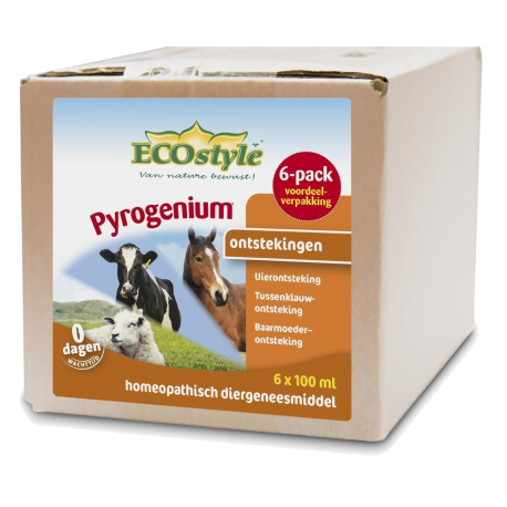 Pyrogenium Compositum Ecostyle 6 pack 100 ML