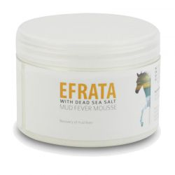 Efrata Mud Fever Mousse